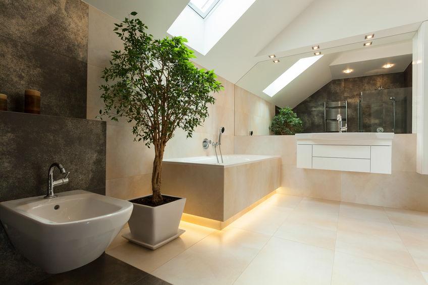 Interior luxus badezimmer